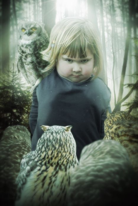Unhappy Girl Holds An Owl, The Internet Reacts Accordingly