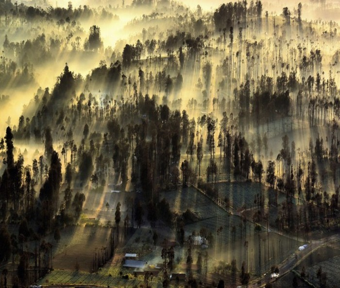 All The Best Pictures From The 2015 National Geographic Photo Contest