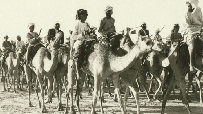See How Much Dubai Has Changed Over The Last 60 Years