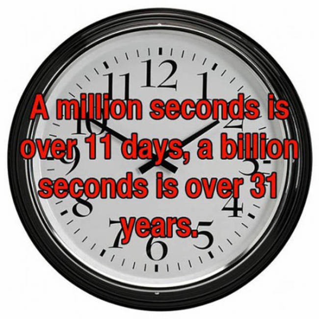 Fun And Fascinating Facts That Will Give Your Brain A Workout