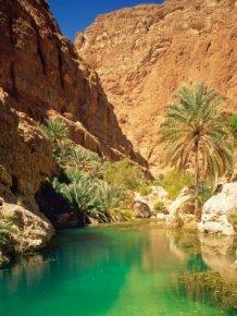 Salalah Transforms Into A Beautiful Oasis