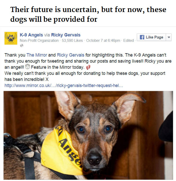 Ricky Gervais Used Twitter To Save Hundreds Of Dogs