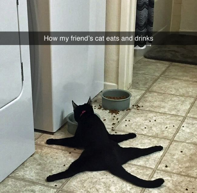 Hilairous Moments That Could Only Happen On Snapchat