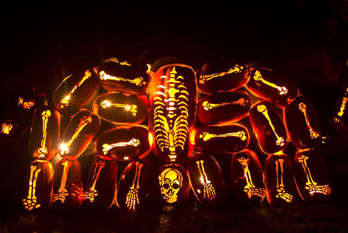 Thousands Of Pumpkins On Display At The Great Jack O' Lantern Blaze In New York