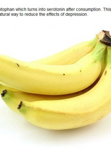 Important Facts You Probably Didn't Know About Bananas