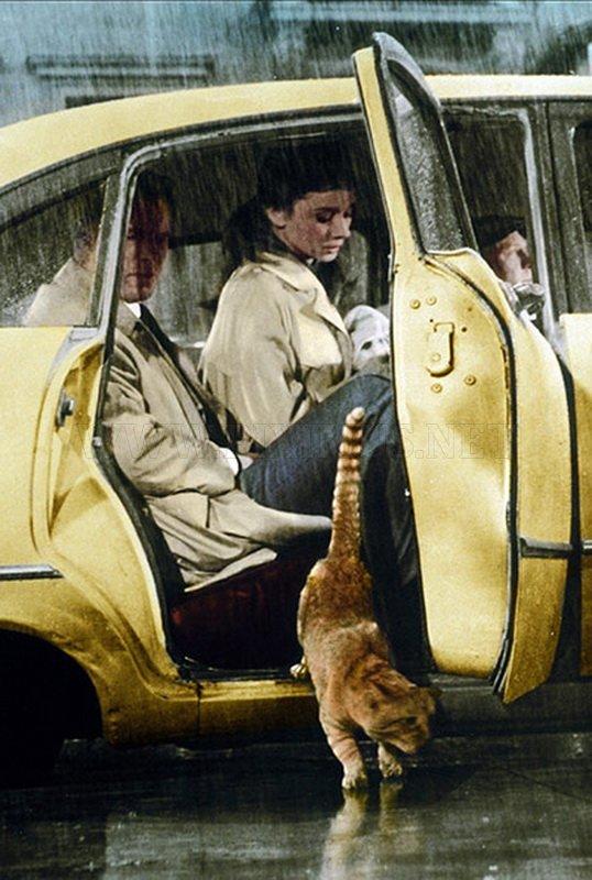 New York Yellow Cab