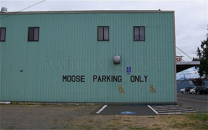 Funny Sign Fails , part 2