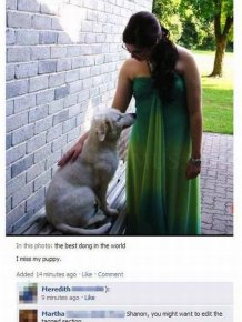 Funny Spelling Fails on Facebook
