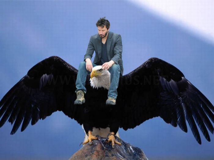 Happy Birthday Greetings to Sad Keanu Reeves
