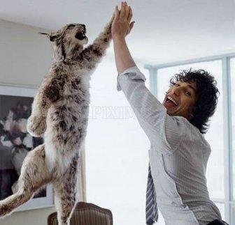 Amazing Animals Who Act Like People