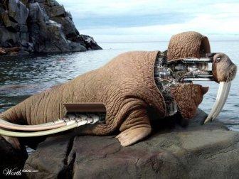 Incredible Robotic Animals Manipulations