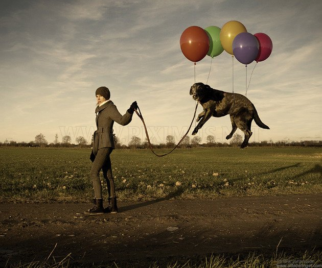 Incredible Photo Manipulation