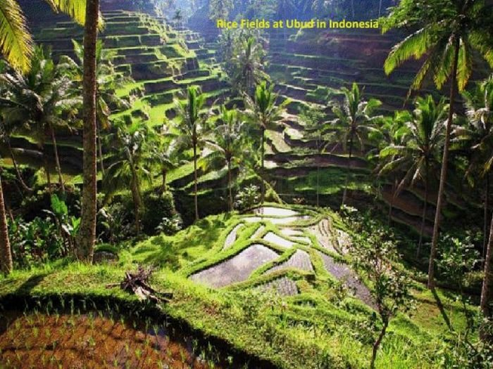 Unusual and Curious Places All Over the World