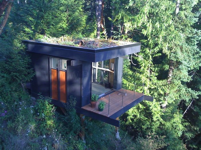 Nature View Office of Dreams
