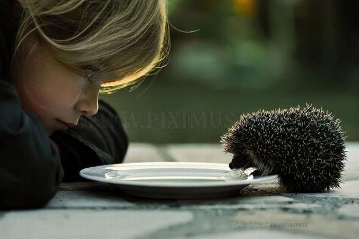 Awesome Motivational Photography
