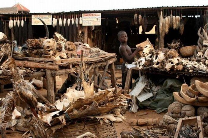Voodoo Supermarket in Togo