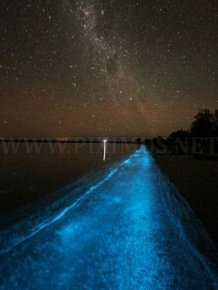 Bioluminescent Lake in Australia