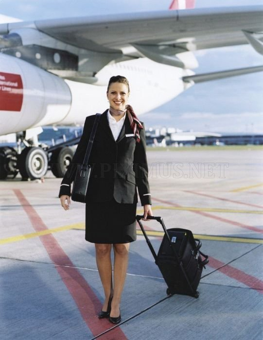 Flight Attendants from All Over the World