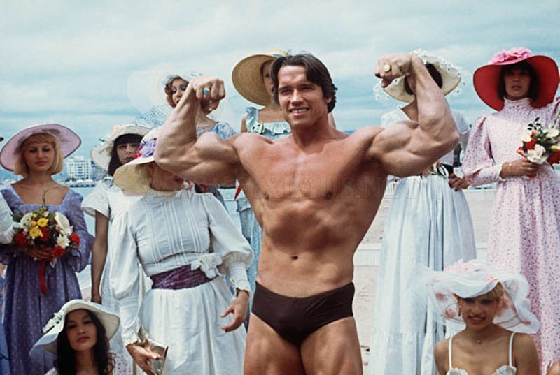 Career of Arnold Schwarzenegger in Photos
