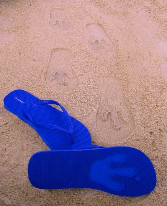 Flip Side Flip Flops