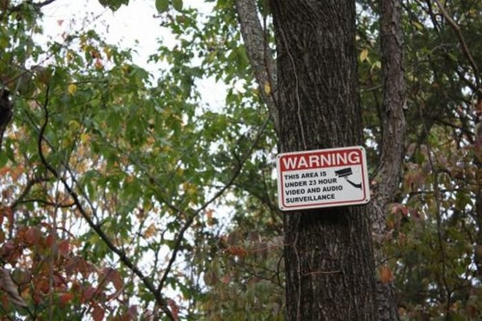 Strange and Funny Warning Signs , part 2