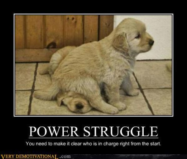 Funny Demotivational Posters , part 12
