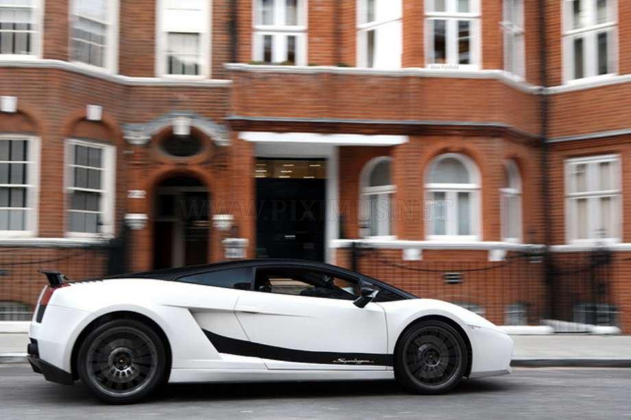 Exotics Cars