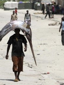 Fishers in Somalia