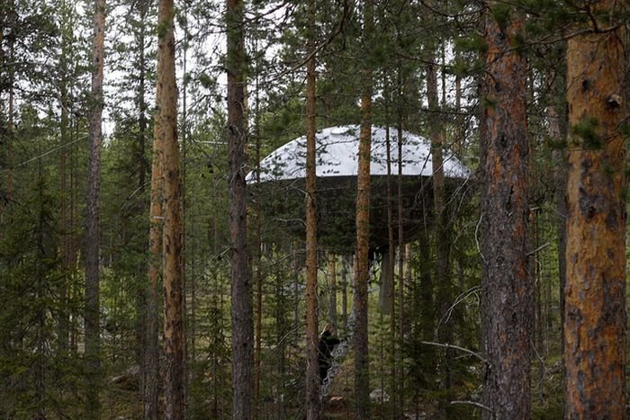 UFO Treehouse in Sweden