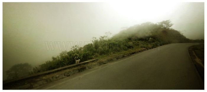 Beautiful Images On Google Street View