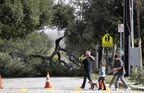 Harrowing Windstorm Leaves Los Angeles Upside Down