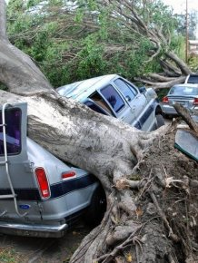 Harrowing Windstorm Leaves Los Angeles Upside Down