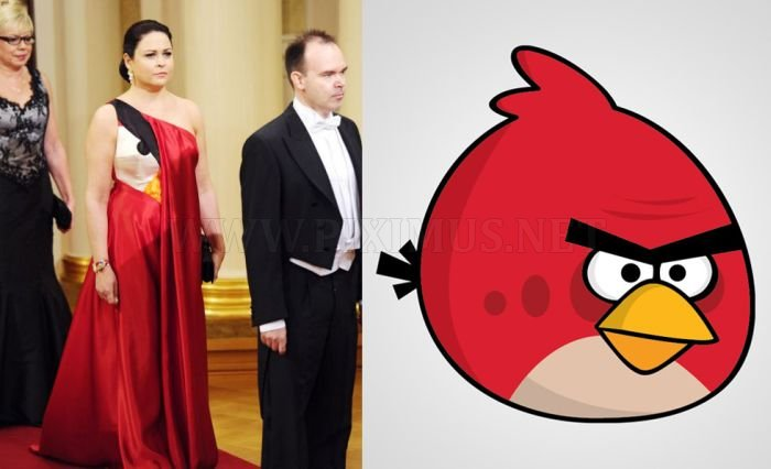 Wife of an App-Maker Wearing an Angry Birds Dress