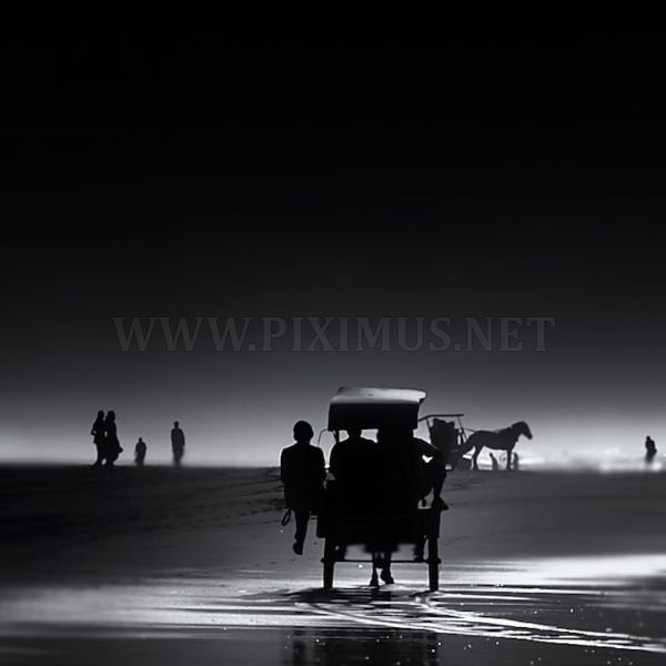 Black And White Photographs