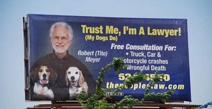 Funny Lawyer Billboards Fun