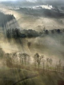 Fog Photography