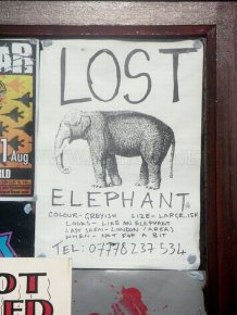 The Best of Lost And Found Signs