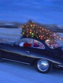 Christmas tree transportation