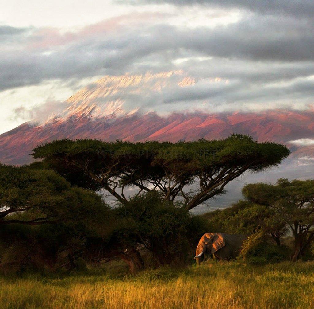Astonishing Beauty of Kenya
