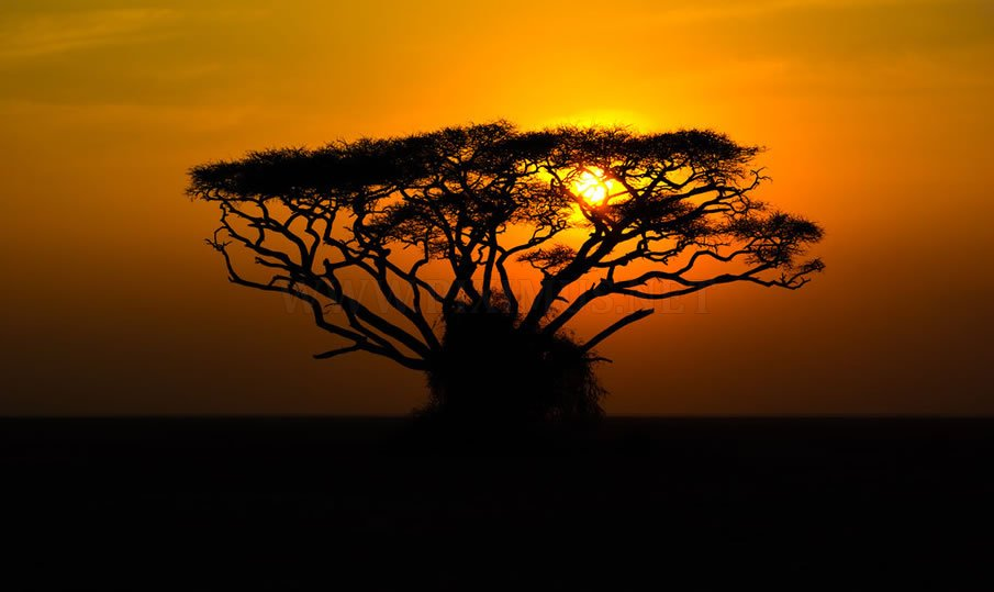 Astonishing Beauty of Kenya