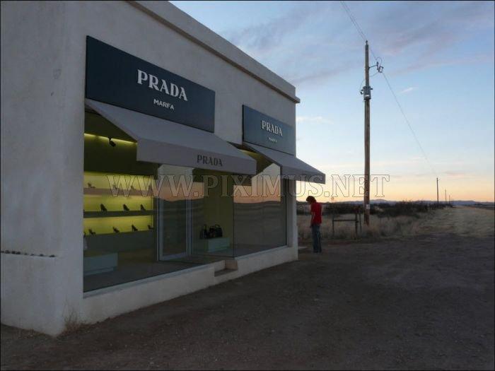 Little Prada in Texas