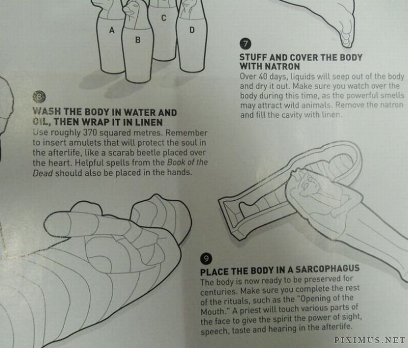 Egyptian Mummification in 9 Easy Steps