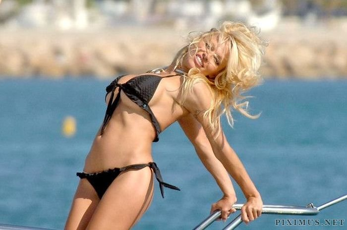 Female Celebrities in Bikinis