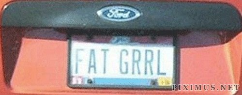 Funny license plates, part 2