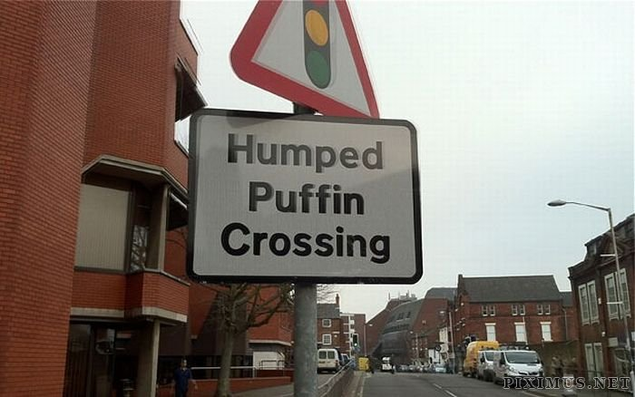 WTF Signs, part 11