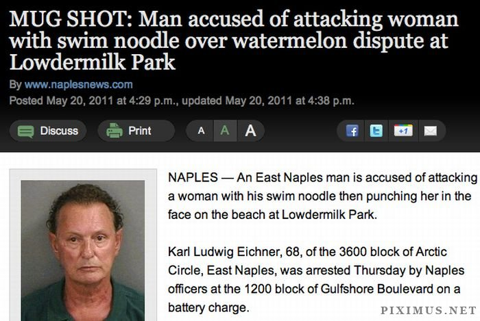 Crazy Things That Happened in Florida Last Year