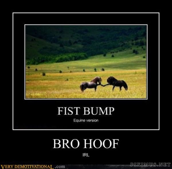 Funny Demotivational Posters , part 29