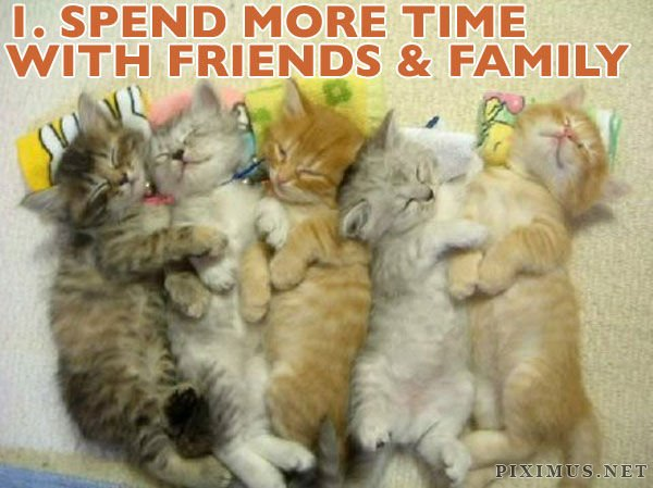 Cats Illustrate New Year's Resolutions