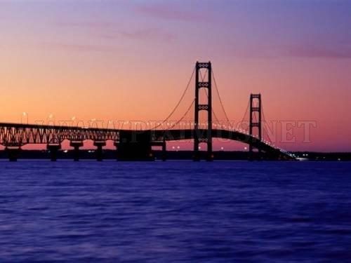 Unique Bridges