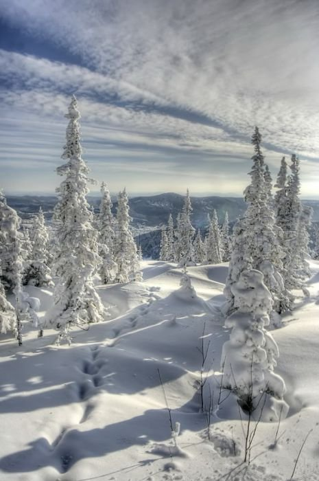Awesome Winter Photos